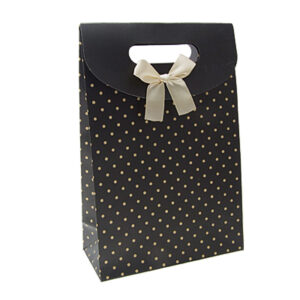 Paper Bags with Ribbon or Plastic handle